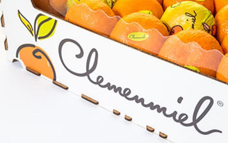 clemenmiel